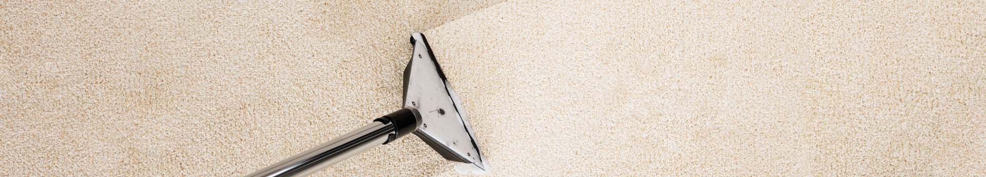 Carpet Steam Cleaning Service Steam Cleaning Company